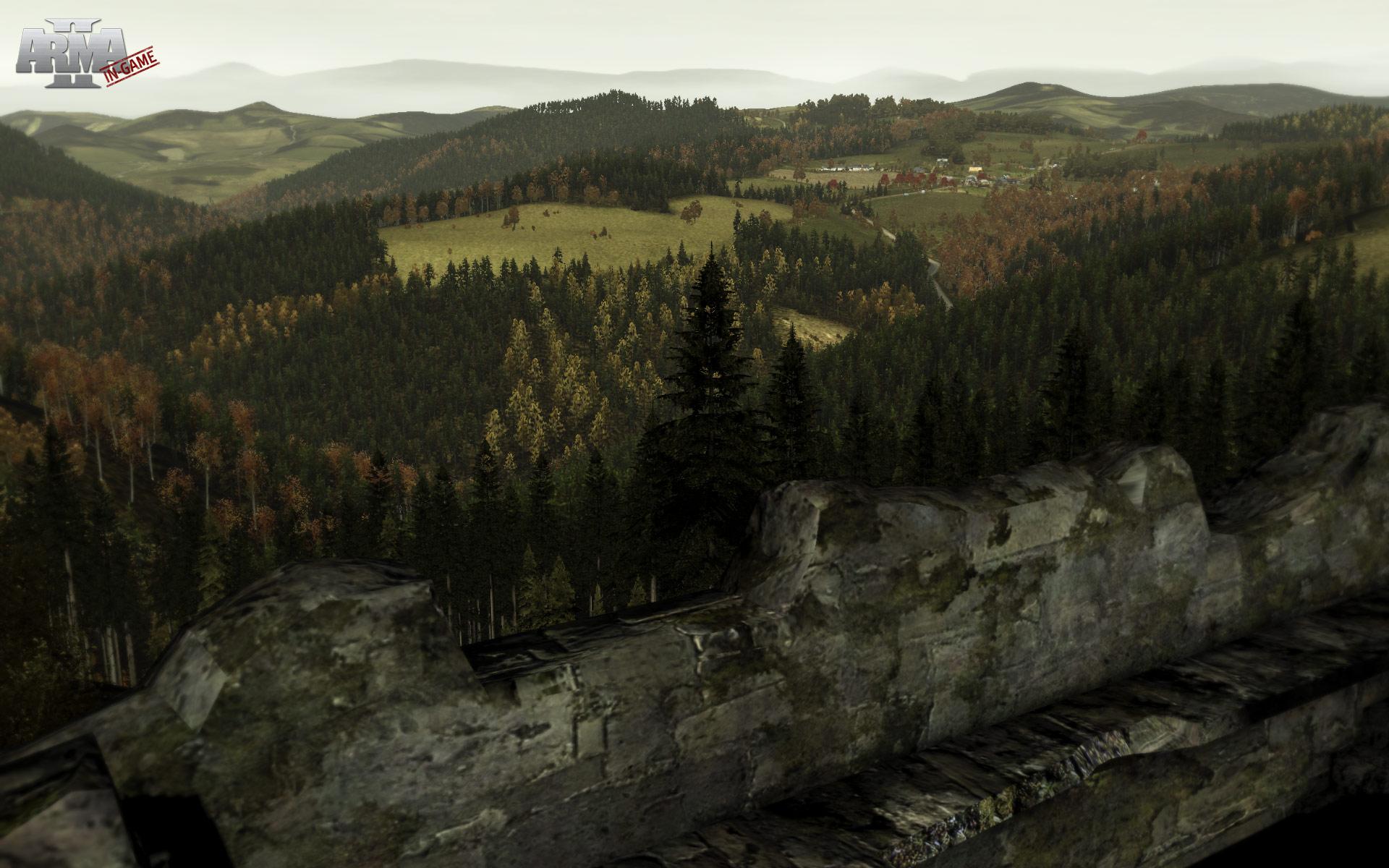 ArmA 2 скриншот.