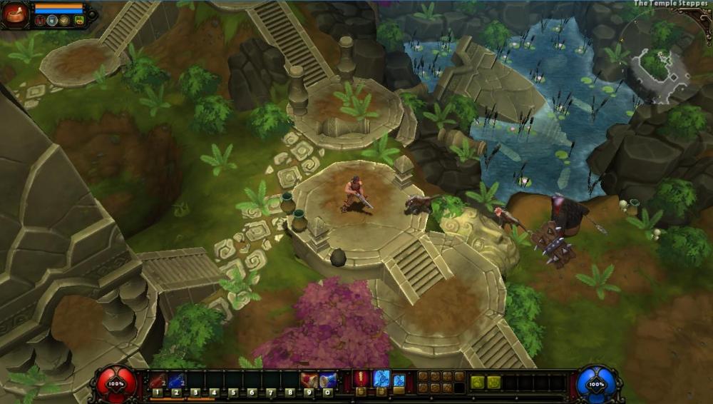скачать игру Torchlight 2 на русском - фото 5