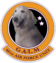 224959-Ace-Combat-7-JPEG-Dog.png