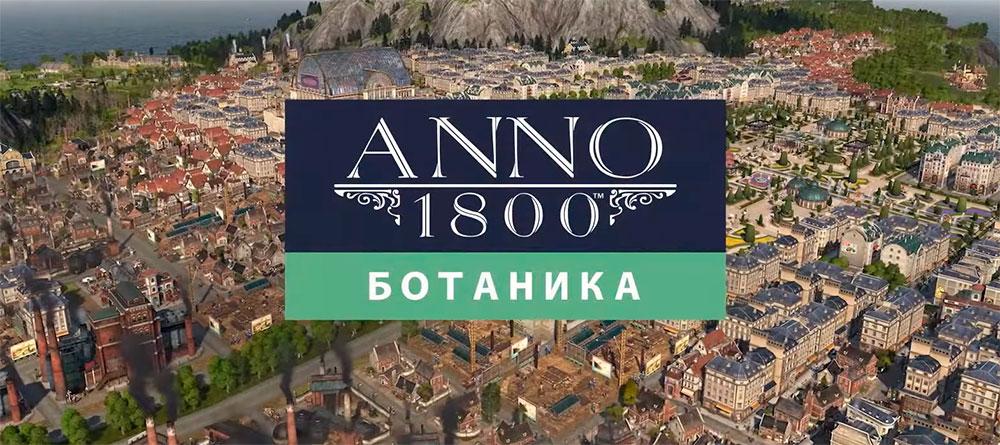 181804-1.jpg