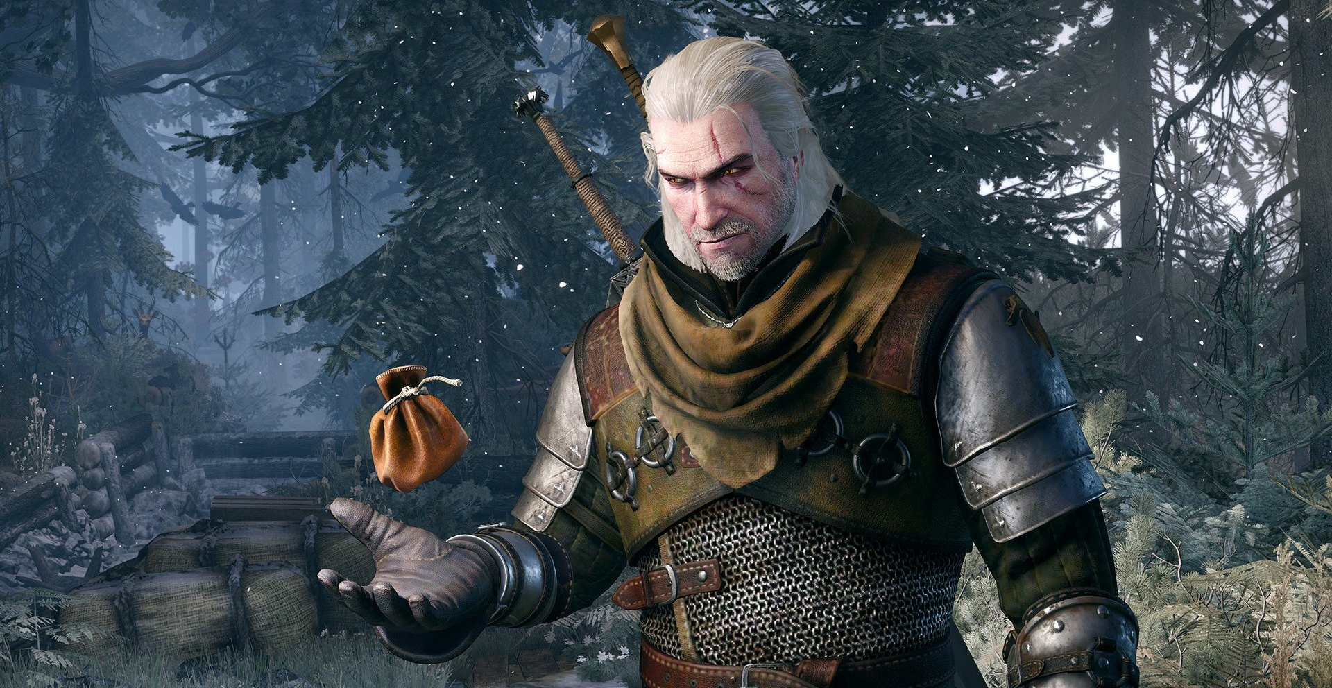 224610-The%20Witcher.jpg